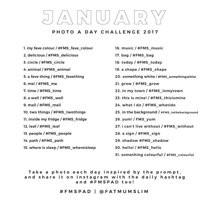 January 2017 Photo A Day Challenge