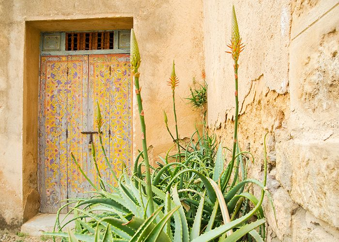 Marokko Rundreise - Die Tipps zur Reise findet ihr auf www.lilies-diary.com #marokko
