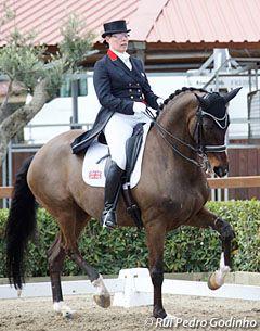 Fiona Bigwood - Equestrian.