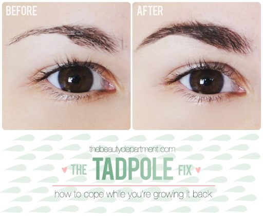 We've all been there... Got a little tweezers happy and ended up with tadpole brows! Luckily there's a way to disguise over-plucked brows until they grow back out! Click through for the step-by-step guide!