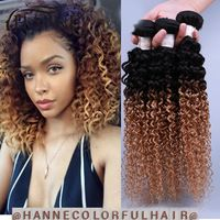 $24.38----3 Bundles Malaysian Curly Weave Hair afro kinky curly hair two tone 1b#27 or 30 two tone ombre human hair extension curly weave