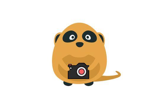bilder-gratis-på-nett #gratis #gratisbilder #bilder #images #freeimages #idiumas #idium