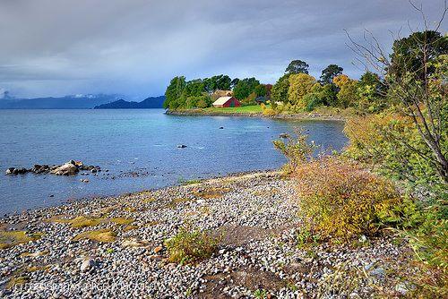 Colores de otoño en Puntilla Nilque - Lago Puyehue (Patagonia - Chile)