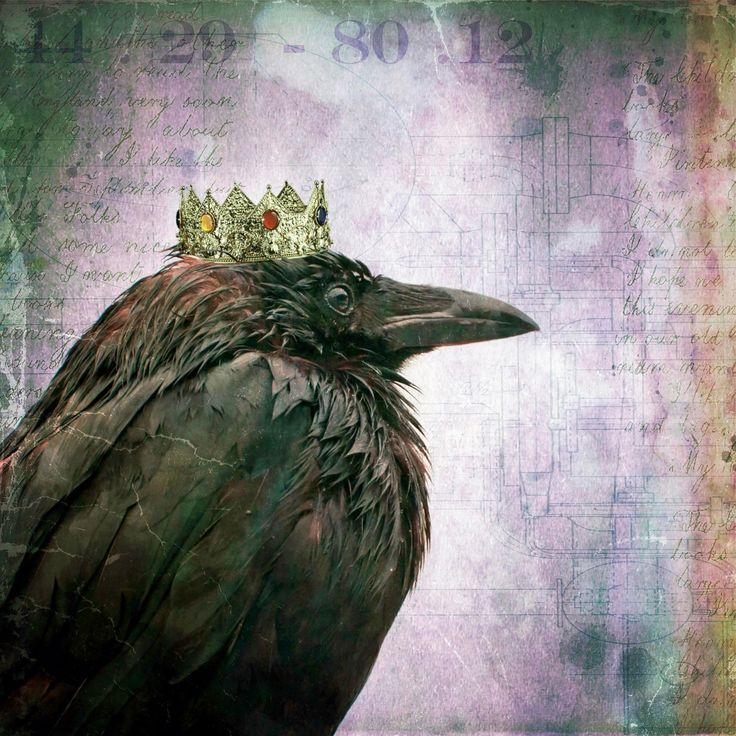Marmont Hill - 'Crow King' by Morgan Jones Painting Print on Wrapped Canvas