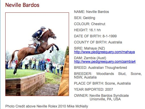 Amazing story!!! Neville Bardos, an australian thoroughbred was purchased by eventer boyd martin for only $850.00 saving him from the slaughter buyers. brought to the usa in 2007, he placed in many 4* events, including rolex, and was short-listed for the beijing olympics. he was the highest placing american horse at the world equestrian games in 2010. in may 2011, he suffered for 45 minutes in a horrible barn fire until he was again rescued by boyd, who risked his own life, entered th...