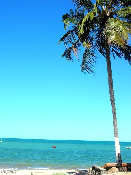 Ponta Verde Beach, Maceió, Brasil; I have a Ponte Vedra Beach outside my hometown of Jacksonville, Fl but this looks a SMIDGE nicer(: