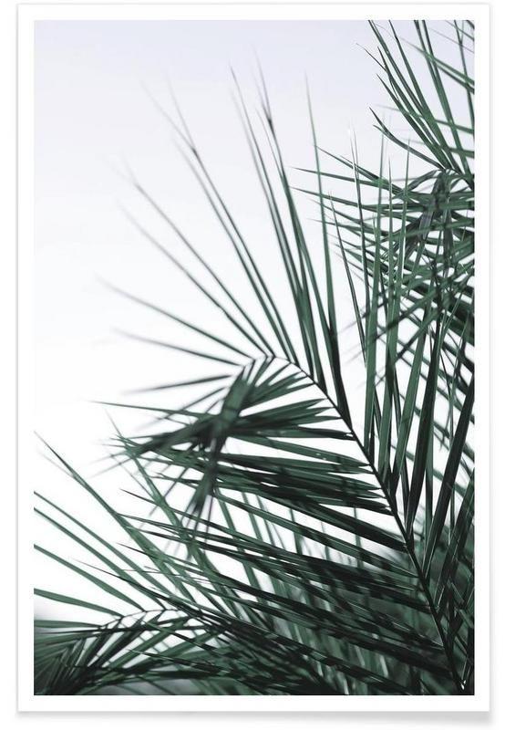 Foliage als Premium Poster von Shot by Clint   JUNIQE