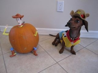 :): 2011 Sausages, Sheriff Costumes, Woody Pumpkin, Sausages Dresses, Animal