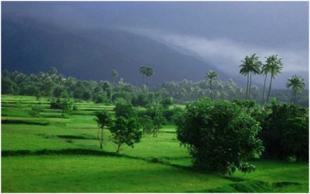 1000 Images About Beautiful Monsoon At Kerala On