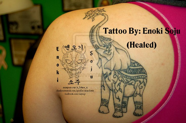 elephant tattoo designs - Yahoo Image Search Results