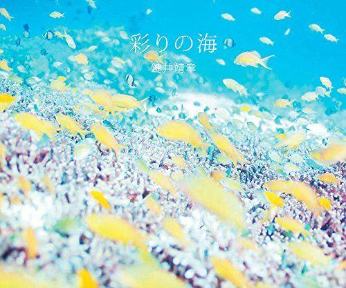Amazon.co.jp: 彩りの海: 鍵井靖章: 本
