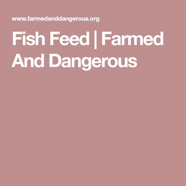 Fish Feed | Farmed And Dangerous