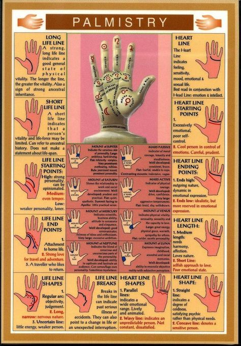 Palm Reading More Palmistry, Stuff, Spiritual, Hands, Menu, Interesting, Things, Magick, Palms Reading palmistry, pretty interesting stuff! Palm reading, charms, crystals and all those mysterious things inbetween Palmistry Hands Charts | Palm reading guide. valid Spiritual Palmistry, magick, nature. i dont know. A lady came for mascara yesterday, we really hit it off and somehow she ended up doing a palm reading on me. She was a nurse super into metaphysics. Probably sinful as a Christian…
