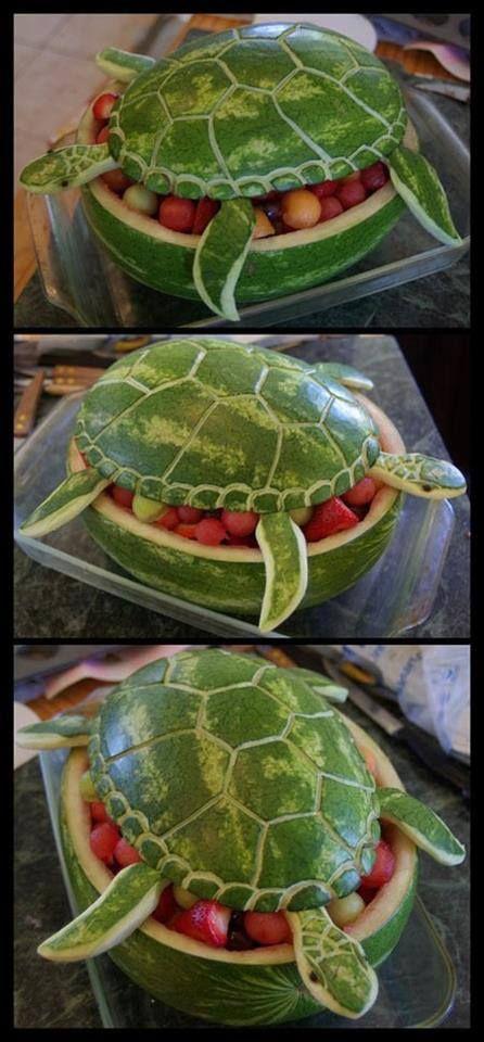 meloen schildpad