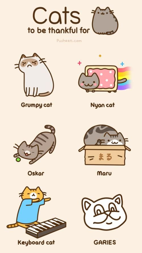 Cats to be thankful for. :) I know the first few and now must look up the rest :)