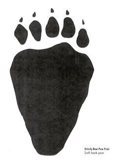 gruffalo footprint? More