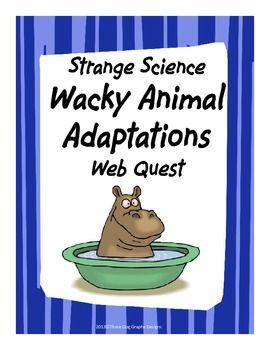 Do you know which deer has fangs? Have you ever heard of an insect that shoots out a boiling liquid? Your students will have fun learning about wacky animal adaptations that they've probably never seen. This one page web quest allows students to use their internet search and interpretation skills to learn more about animal adaptations. There are 10 adaptation questions in all. An answer key is included.