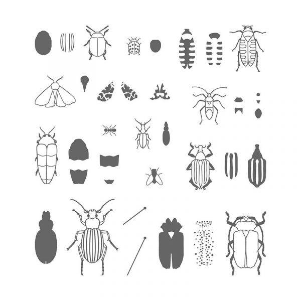 17 best ideas about beetle bug on pinterest