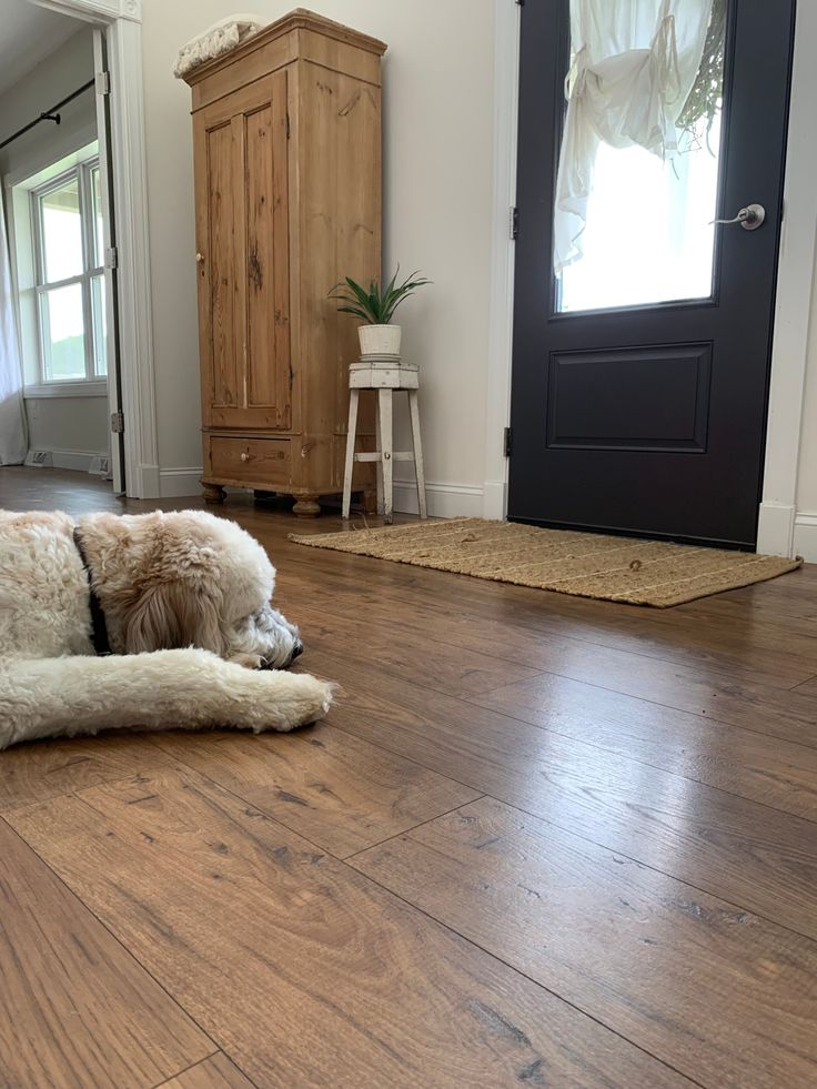 Pergo Flooring FAQ's & a One Year Review (With images