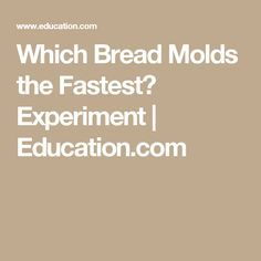 Which Bread Molds the Fastest? Experiment   Education.com