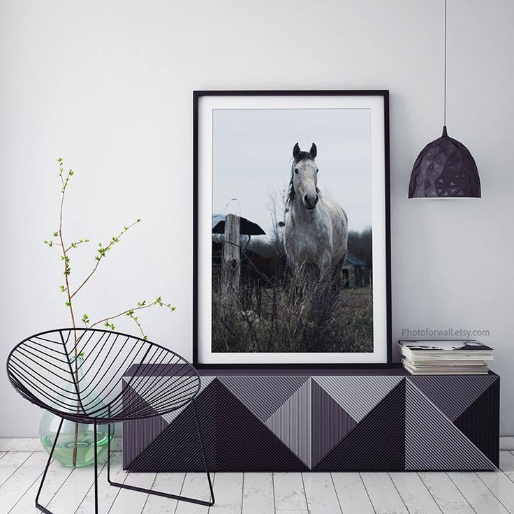 Horse decor/horse photography/girl room decor/horse art/bathroom decor/ : horse wall art - www.pureclipart.com