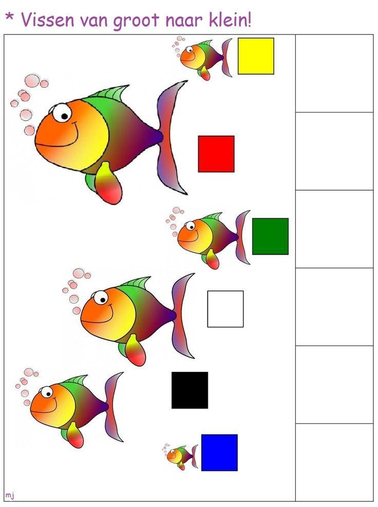 Knijpkaart: Vissen van groot naar klein! 1-2