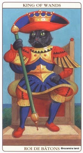 36 Best Cats In Tarot: Marseille Cat Tarot Images On