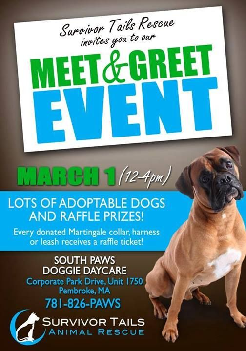11 best prayers and sayings for homeless animals images on pinterest meet and greet event march 1st at south paws doggie daycare in pembroke in order to take home a pup that day get pre approved fill out an adoption m4hsunfo