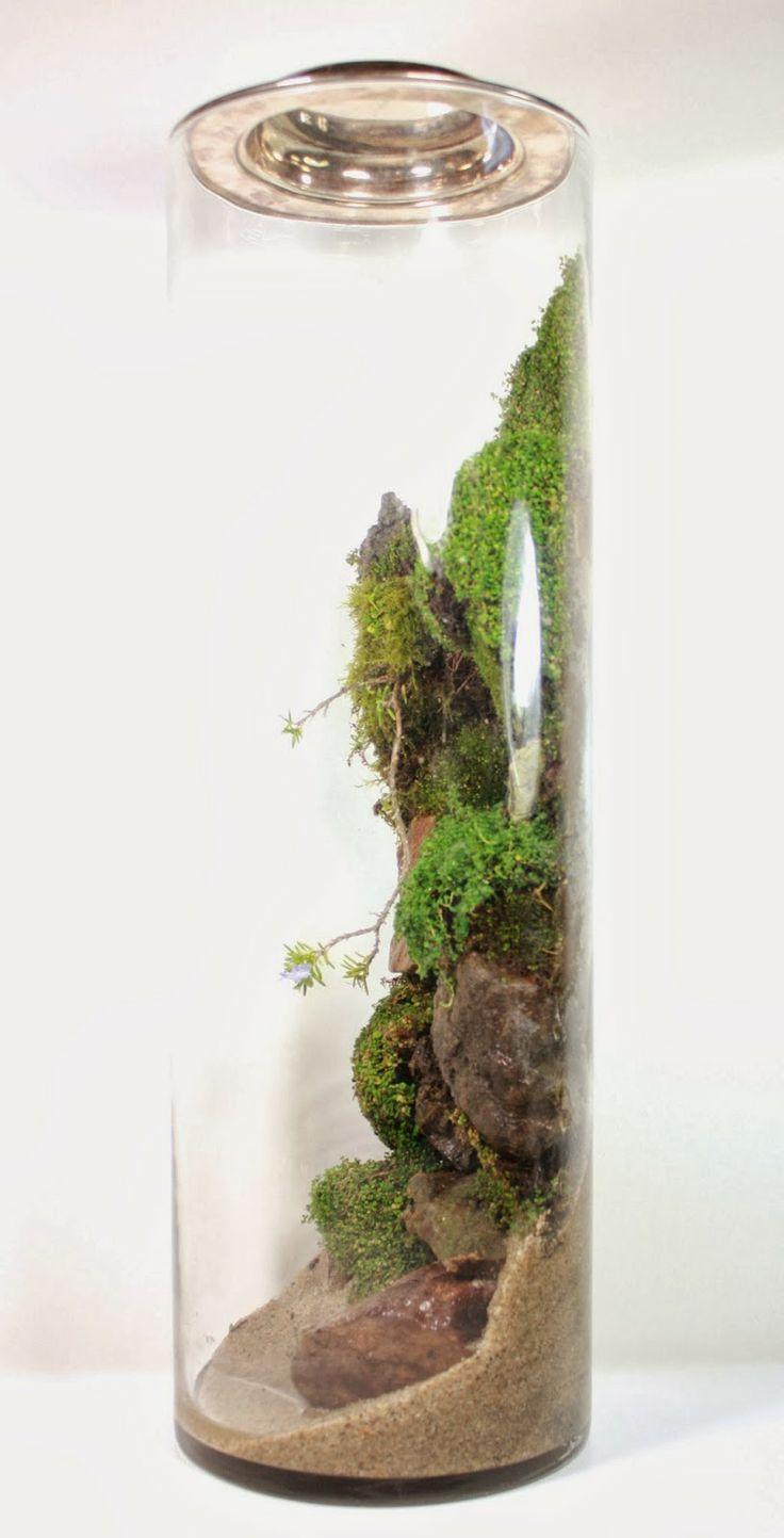 best indoor garden images on pinterest terrariums succulents