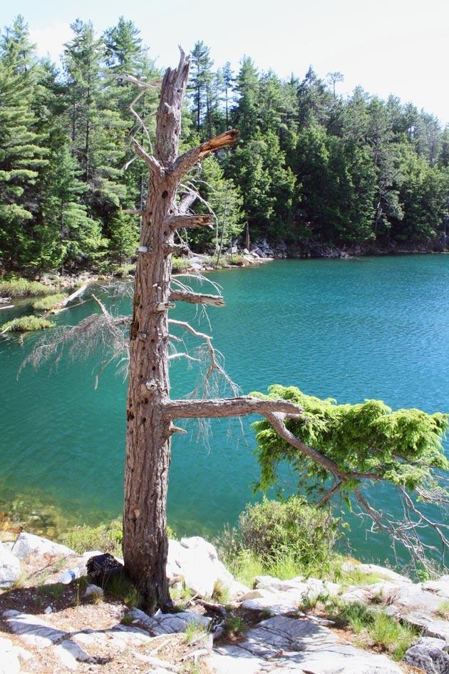 Topaz Lake - Killarney. I need to go there again!