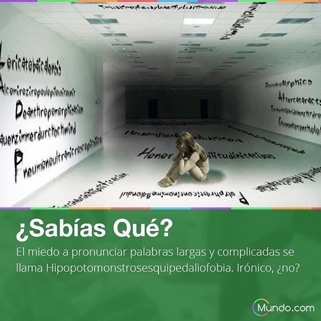 De hecho es la palabra más larga del mundo  #palabramaslarga #fobia #fobias #miedos #datocurioso #datointeresante #curiosidades #sabiasque #mundo #mundopuntocom