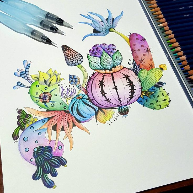 Finished a quick illustration by @rachelreinertstudio, using #derwent #watercolor pencils, #pentel brushes, and just a bit of #slicci #metallicgelpen.  #rachelreinert #rachelreinertstudio #botanicalwonderland #artistsedition #coloring #coloringforadults #adultcoloring #coloringbook
