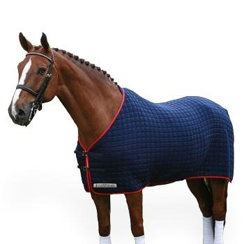 Thermatex Horse Rug But In Black Gold