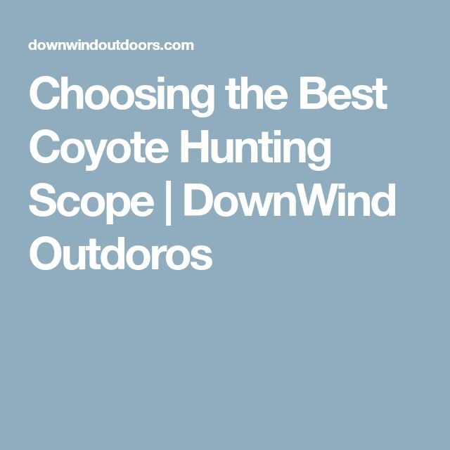 Choosing the Best Coyote Hunting Scope | DownWind Outdoros