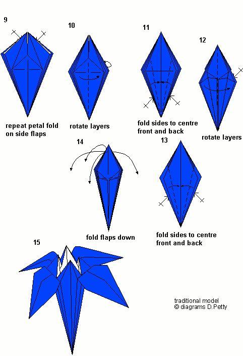 Iris Diagrams Page 2