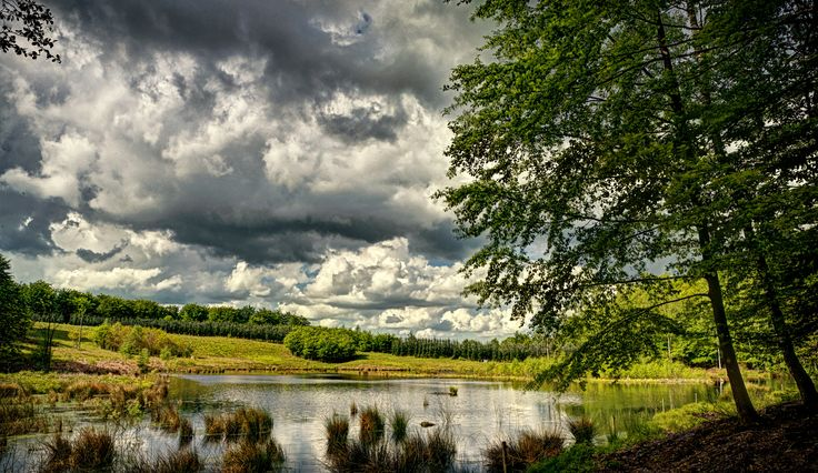 Lake - Svanninge Bjerge - southwest Funen, Denmark...   Flickr - Photo Sharing!