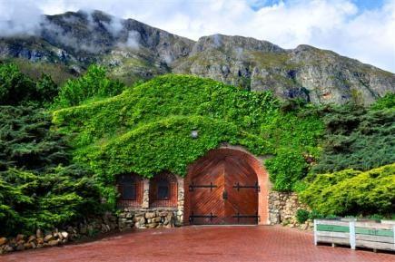 Chamonix Wines | Official Franschhoek Wine Valley Website