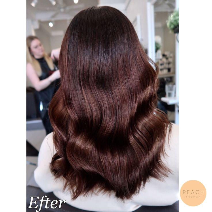 Från blått ombre hår till fin mustig chokladbrun med skiftningar