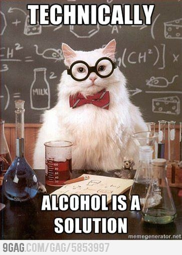 """Chemistry Cat says, """"Technically, alcohol IS a solution."""""""