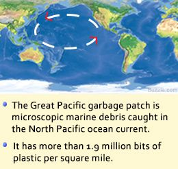 Startling Facts About Ocean Pollution You Need to Know Right Now ...