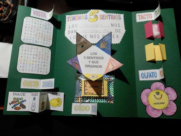 Tras dos semanas de trabajo intenso, el lunes por fin acabamos todos nuestros lapbook sobre los 5 sentidos. Un lapbook es un libro de pop-ups (desplegables) realizado por los propios niños sobre un…