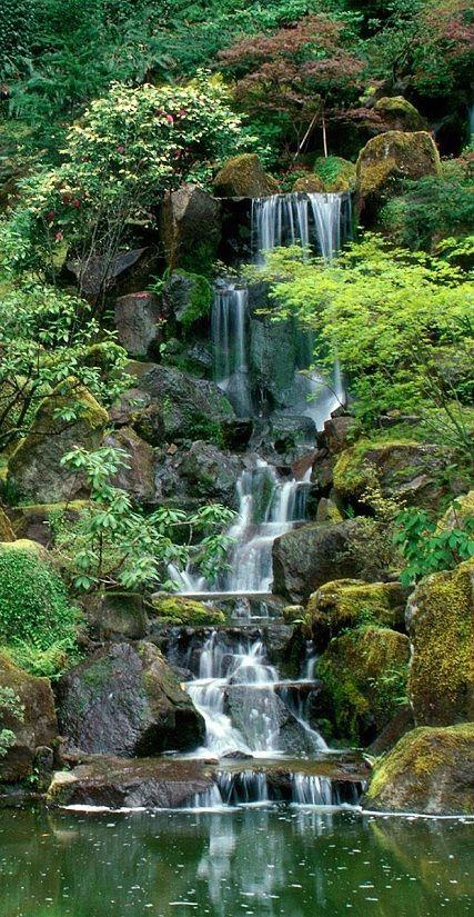 Amazing Japanese Garden