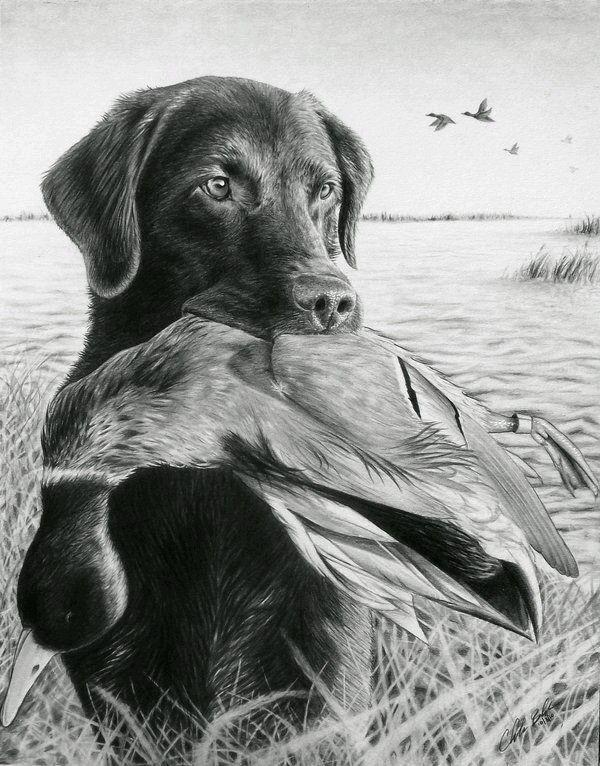 Pin by Annika Kilanowski on Drawing   Pinterest   Draw