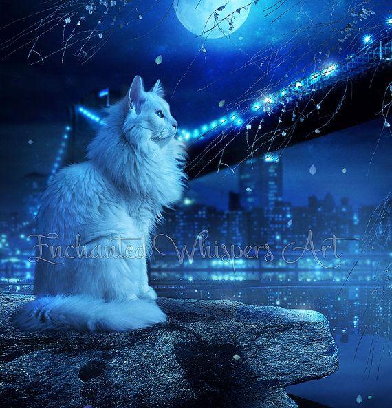 White Cat artworkCity Kitty printLong by EnchantedWhispersArt
