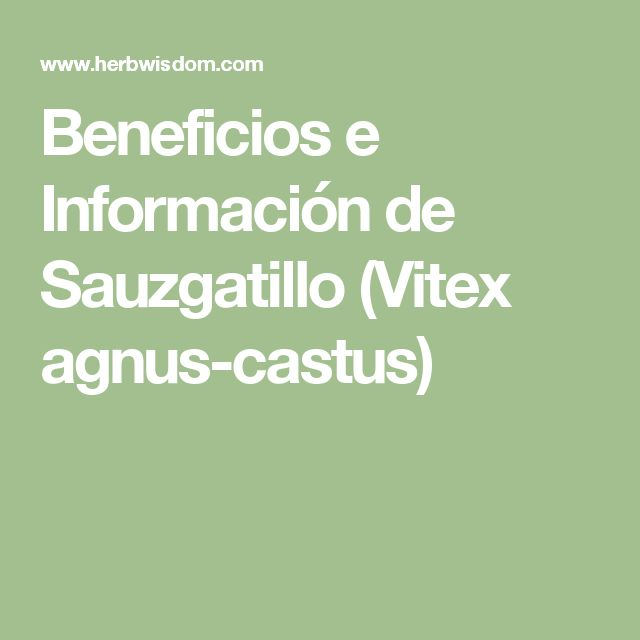 Beneficios e Información de Sauzgatillo (Vitex agnus-castus)