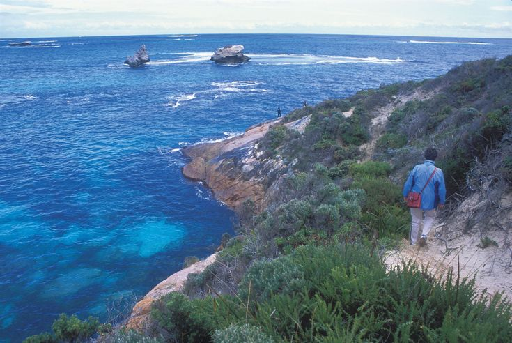 Dog friendly camps Western Australia
