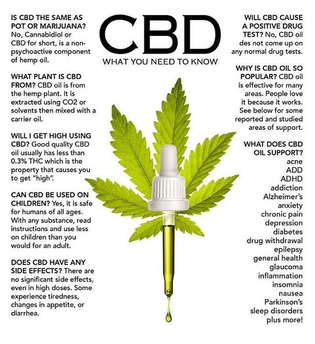 Curious about #CBD oil? Here's some interesting information