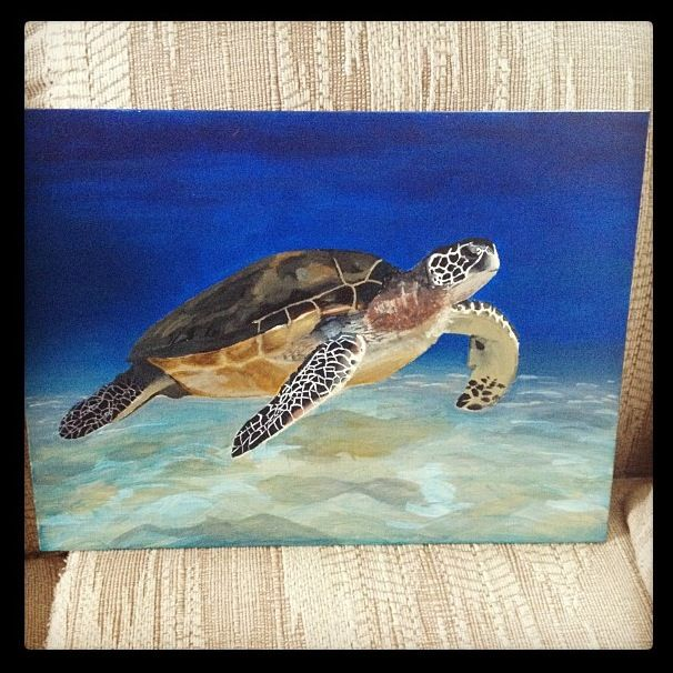 1000 ideas about turtle painting on pinterest sea for Turtle fish paint