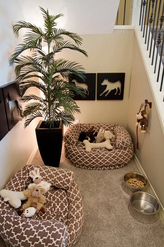 """Dog Room Under the Stairs. Too cute! Beau and all my future fur babies will have their own little """"home"""" #decorateyourspace"""