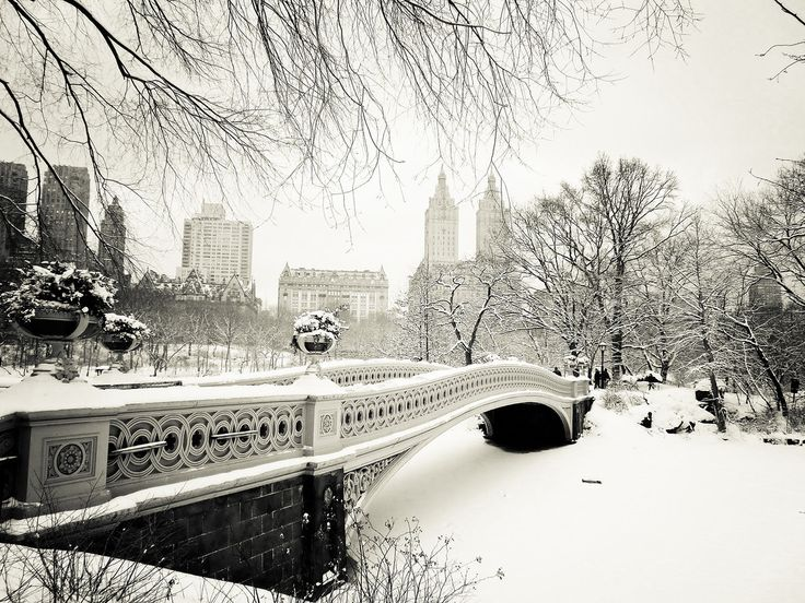 New York City Winter: Take a moment to revel in the storybook-like views of Central Park's most romantic bridge, Bow Bridge, covered in snow.: Centralpark, Winter Wonderland, Parks, Snow, New York, Place, Central Park, Newyork